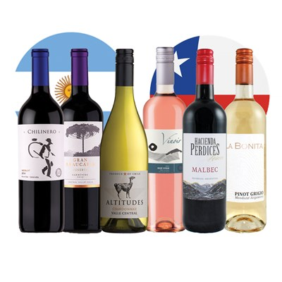 Experience South American Wine Case of 6