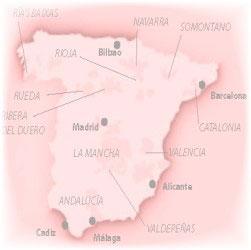 Wine Tour Spain