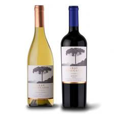 Buy & Send Gran Araucaria wine duo