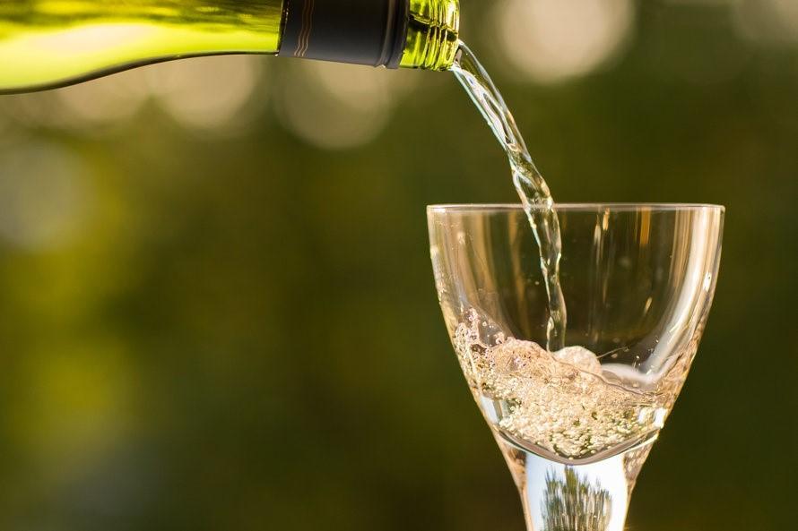 Clear Gavi Wine Glass